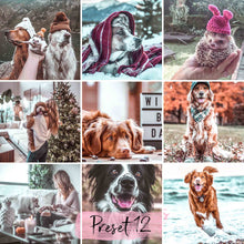 Load image into Gallery viewer, 15 Desktop Presets HAPPY PETS - KatManDooPRESETS