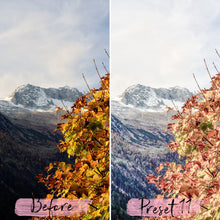Load image into Gallery viewer, 15 Mobile Presets FALL