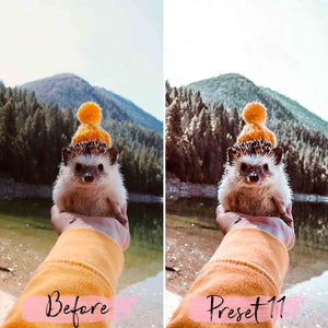 15 Desktop Presets HAPPY PETS