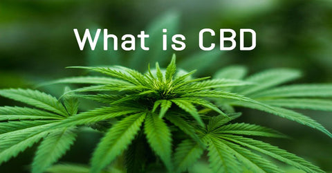 What is CBD? Graded Green