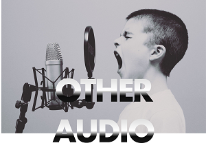 other audio rental hire