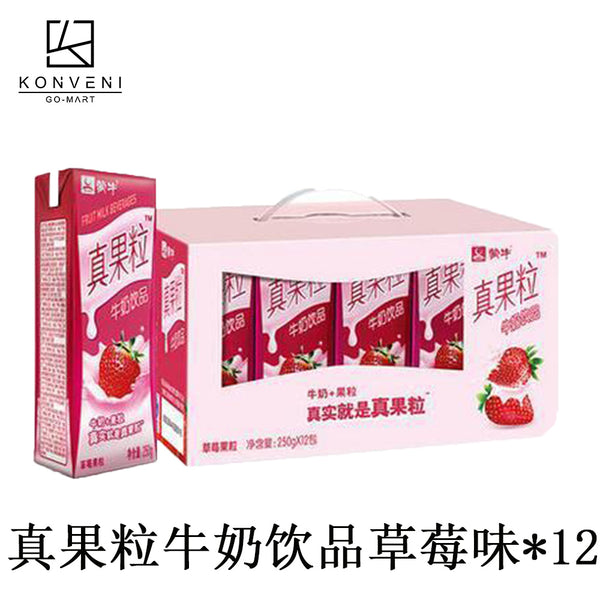 Mengniu Fruit Milk Drink (Strawberry Flavor) 250ml * 12 - KonveniGomart