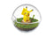 Re-Ment POKEMON Terrarium Collection (6 kinds in a set) - KonveniGomart