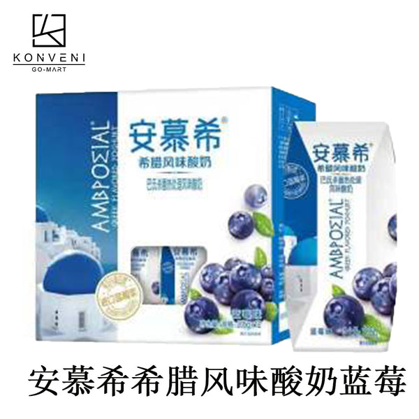 AMBPOEIAL Greek Yogurt (Blueberry Flavor )  205ml*12 - KonveniGomart