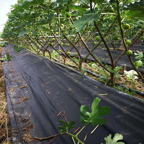 1.5oz Non-Woven Landscape Weed Barrier Fabric