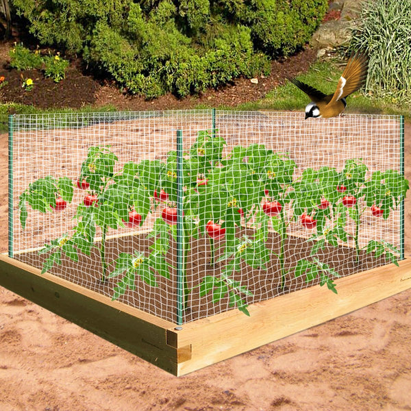 Agfabric Insect & Bird Barrier Net Made of High-Quality PP Material issued by Wellco Industries Inc. in California