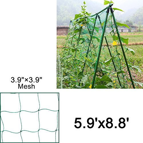 Green Trellis Netting (7x6ft, 7x5ft, 7x8ft)