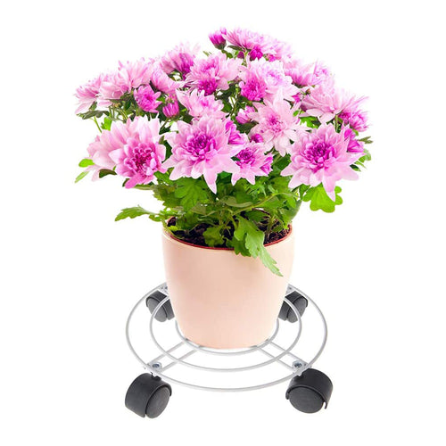 "Plant Caddy white 9.8""dia"