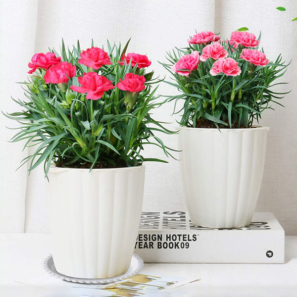Plastic Planter Saucer 8.7in of Outer Dia