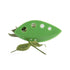 Herb Leaf Stripping Remover 4.7*2.3in Green