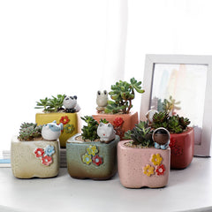 Mini Succulent Planter Dia3.3*H3.9in, 6 pack
