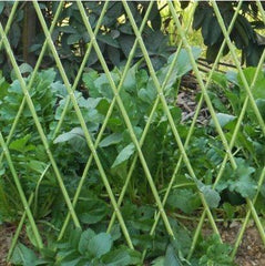 Flexible Fence, Bamboo Fence, Bamboo Sticks
