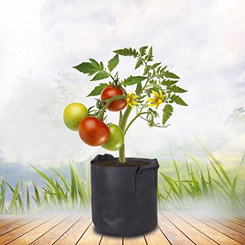 Fabric Aeration Grow Bag with Sturdy Handles, More Convenient for Gardening