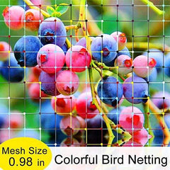 Colourful Bird Netting (6ftx36ft, 7ftx20ft, 10ftx36ft)
