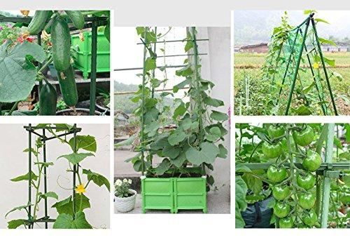 Agfabric garden stakes for climbing plants
