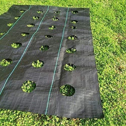 Woven Weed Barrier for Raised Bed