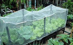 Insect Barrier Cage