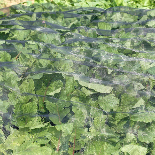 Agfabric offer a variety of different options with more competitive price and high quality for our customers.