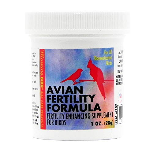 Morning Bird Avian Fertility Supplement for Birds 1oz