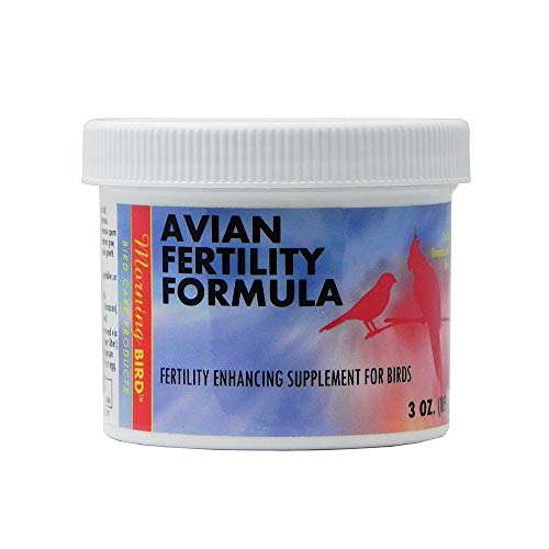 Morning Bird Avian Fertility Supplement for Birds 3oz