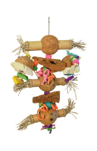 Prevue Pet Products 62474 Bodacious Bites Bamboo Shoots Bird Toy, Multicolor