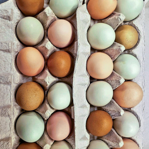 Farm Raised Eggs Add-On
