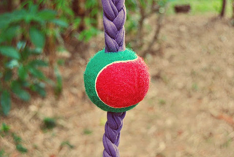 rope and tennis ball dog toy