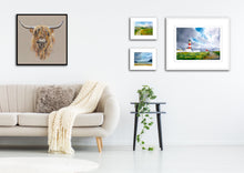 Load image into Gallery viewer, Highland Cow on Canvas