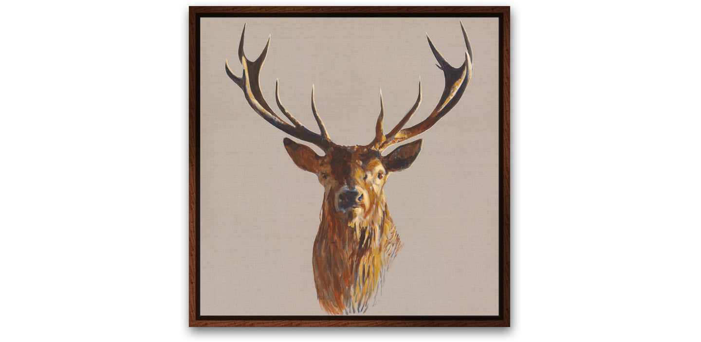 Stag on Canvas