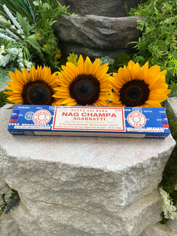 Nag Champa Box of 12