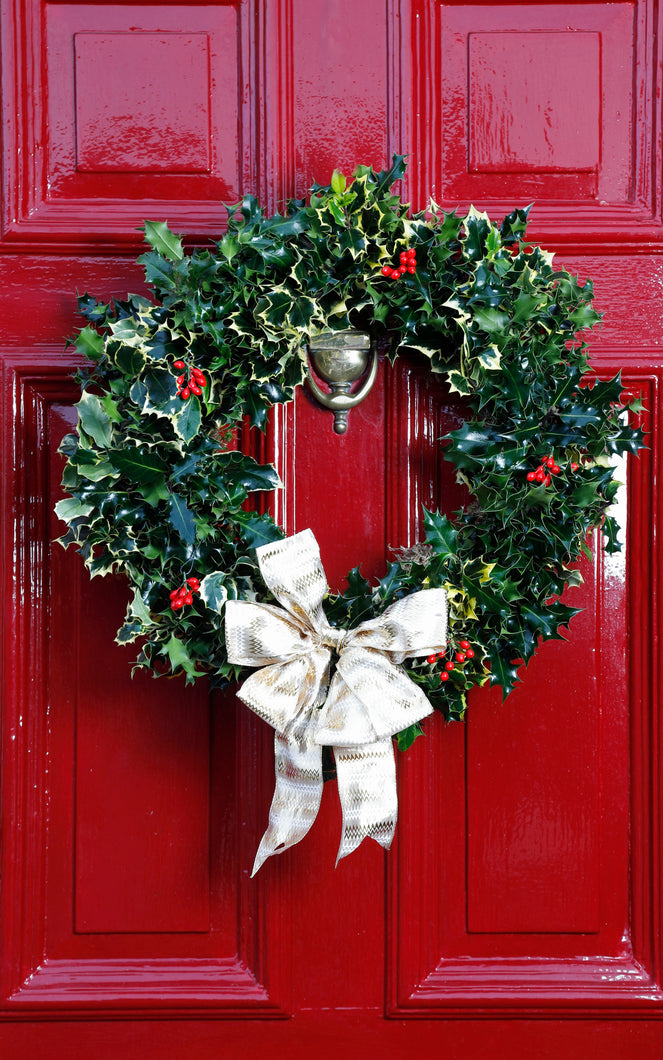 Real Christmas Holly Wreath - Large Door Wreath