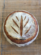 Load image into Gallery viewer, Baking Bread with Ancient Grains