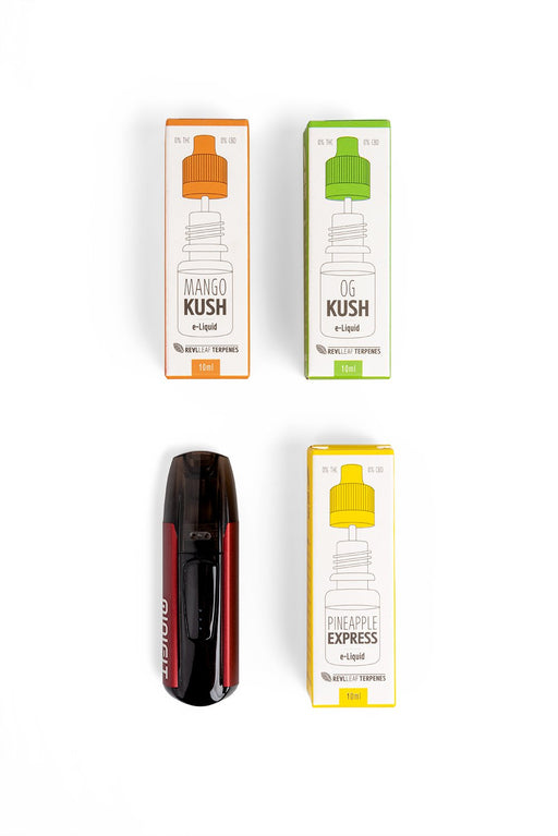 kit ensemble e-cigarette électronique liquides enrichis terpènes sans nicotine naturel saveur mango kush pineapple express og kush recharge usb