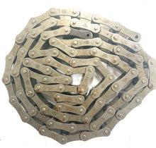 S62 AGRICULTURAL ROLLER CHAIN 10' COIL