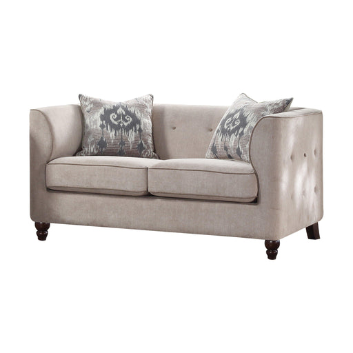 Cyndi Loveseat (with 2 Pillows)-Loveseat-ACME-52056-ModLux_Living_furniture