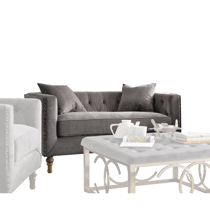 Sidonia Loveseat (with 2 Pillows)-Loveseat-ACME-53581-ModLux_Living_furniture