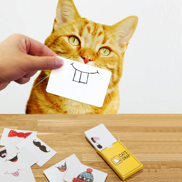 Cat Snap Cards