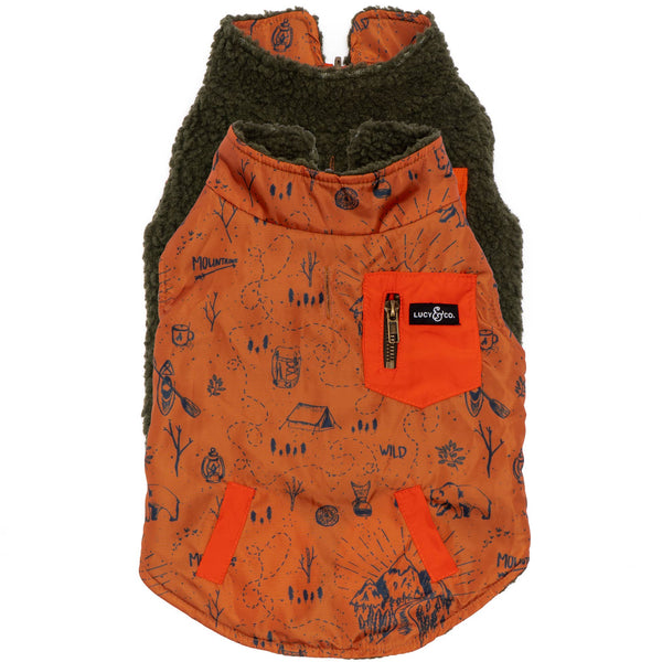 Big Bear Reversible Teddy Dog Vest