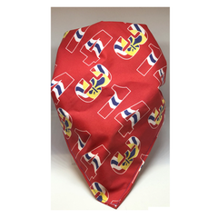 314 St. Louis Flag Dog Bandana