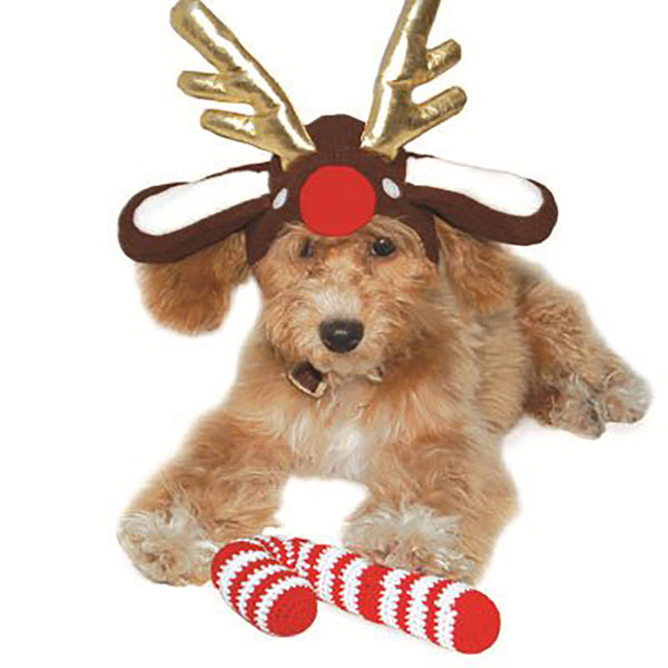 Hoiday Reindeer Dog Hat - Lola & Penelope's