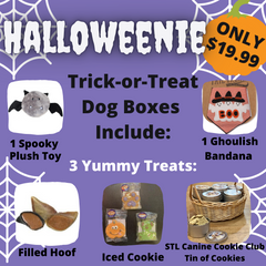 Halloweenie Trick-Or-Treat Box