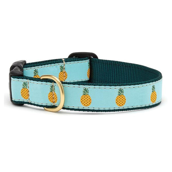 Pineapple Dog Collar & Matching Lead Available
