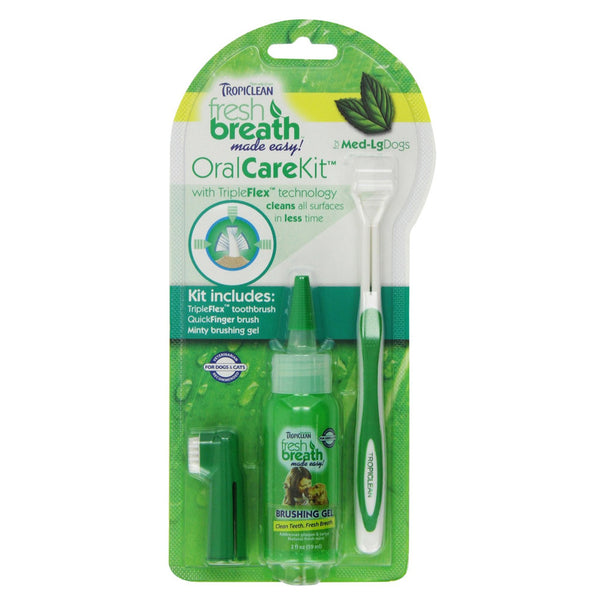 Fresh Breath Oral Care Kit - Lola & Penelope's