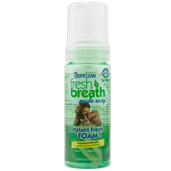 Fresh Breath Instant Fresh Foam - Lola & Penelope's