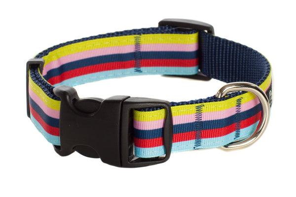 Bubble Gum Striped Dog Collar - Lola & Penelope's