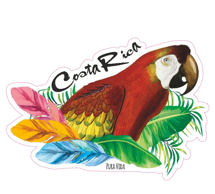 Parrot Die-Cut Sticker - Slothtoescr
