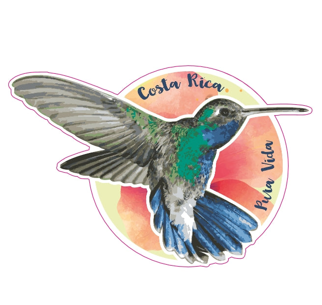Humming Bird Die-Cut Sticker - Slothtoescr