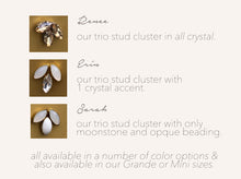 Load image into Gallery viewer, Erin Earrings in White Crystal