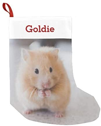 McC538arthy Personalized Christmas Stocking, Pet Hamster Lover Photo Name Small Velvet Custom Christmas Stocking Xmas Stocking Ornaments for Family Decorations