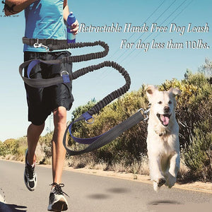 hands free dog leash for runners